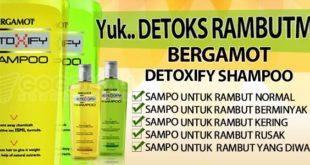 bergamot-detoxify-shampoo-sampo-untuk-berminyak-rambut-kering-rambut-rusak-rambut-diwarnai