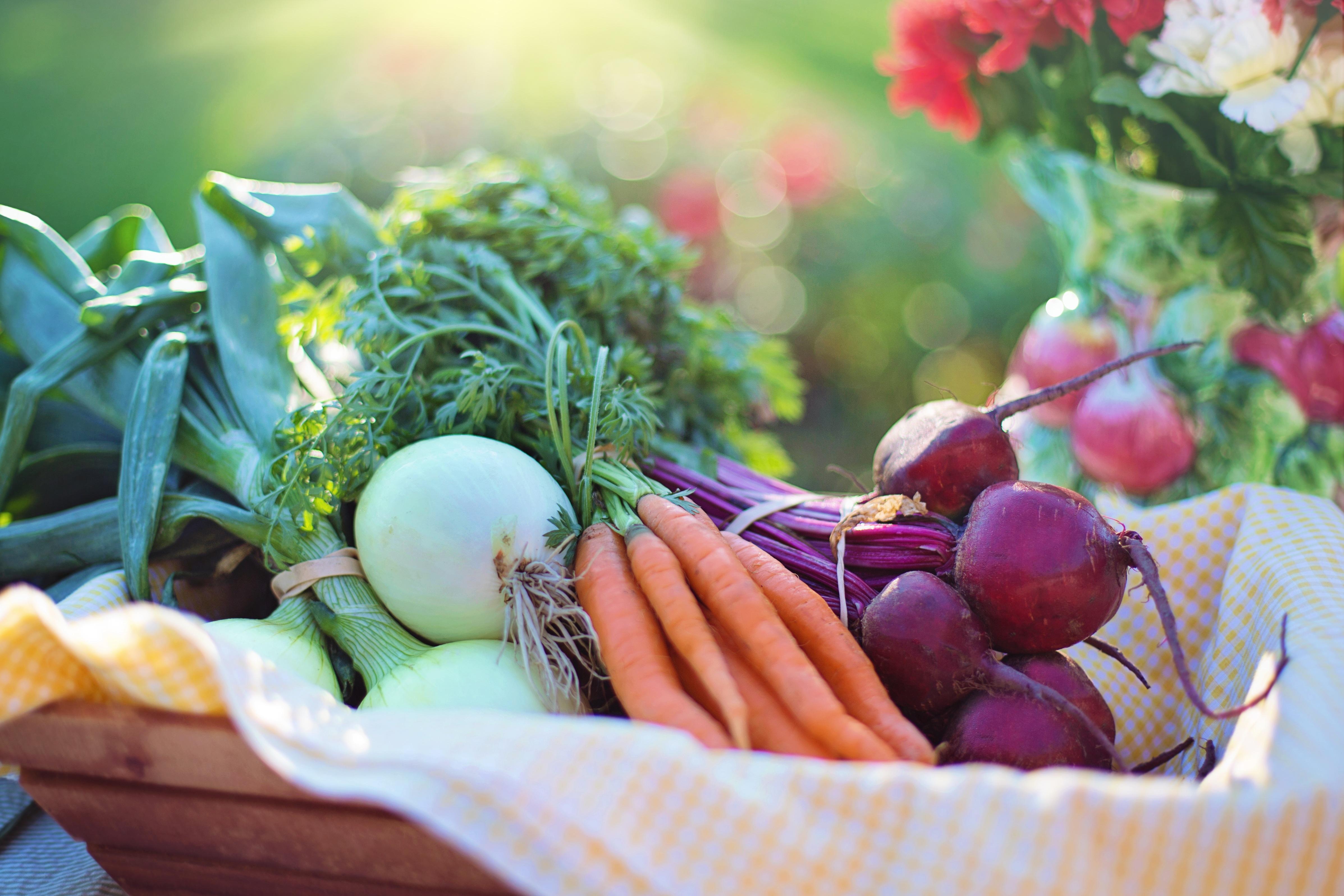 Makanan bagi Orang Tua: 4 Hal yang perlu diperhatikan